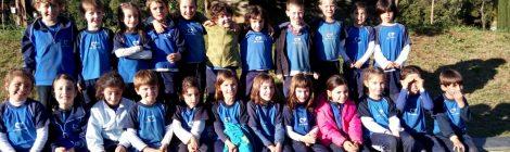 Colònies a Educació Infantil